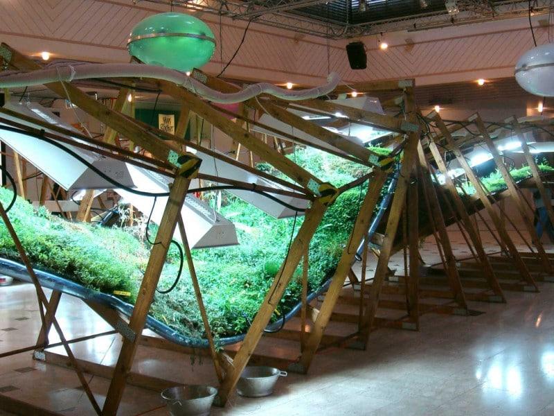 installation artistique végétale