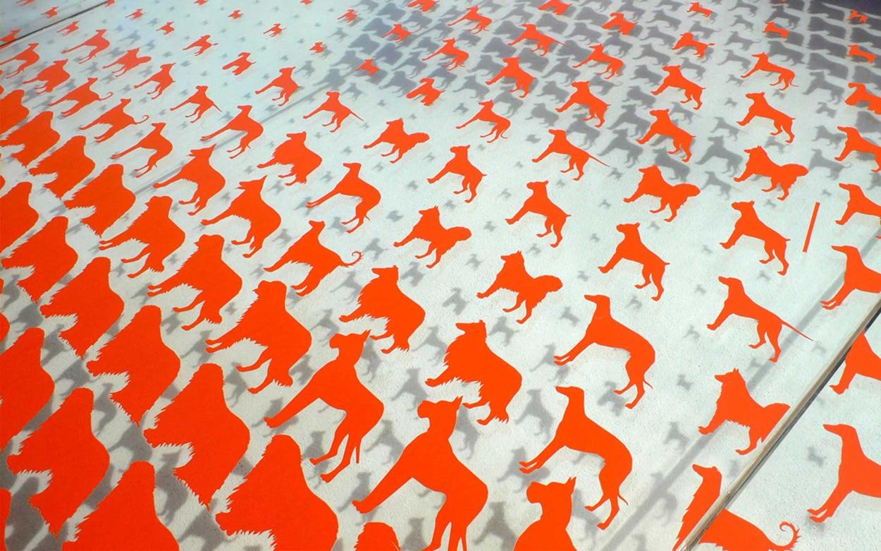 Pixels chiens chronophotographie sur vitrine metalobil for Mobilier japonais nantes
