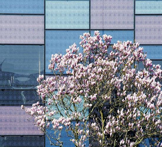 Habillage graphique façade